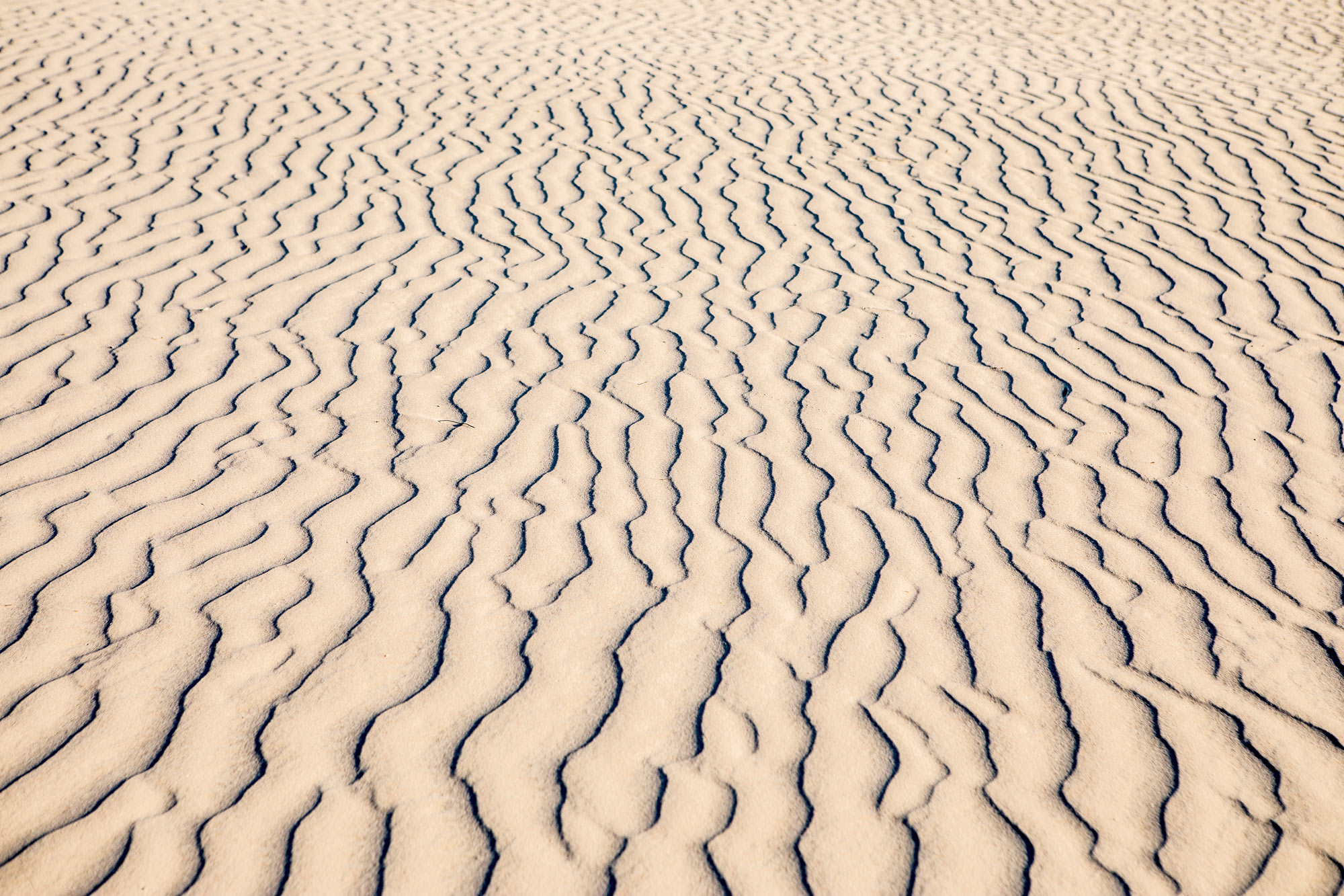 Sand Ripples - Guadalupe Mountains State Park