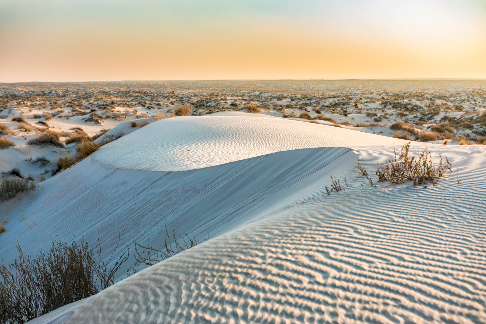 Salt Basin Sand Dunes - Guadalupe Mountains State Park