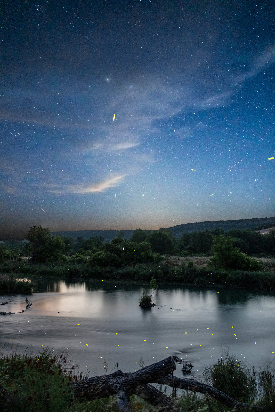 Fireflies and Stars in South Llano River State Park