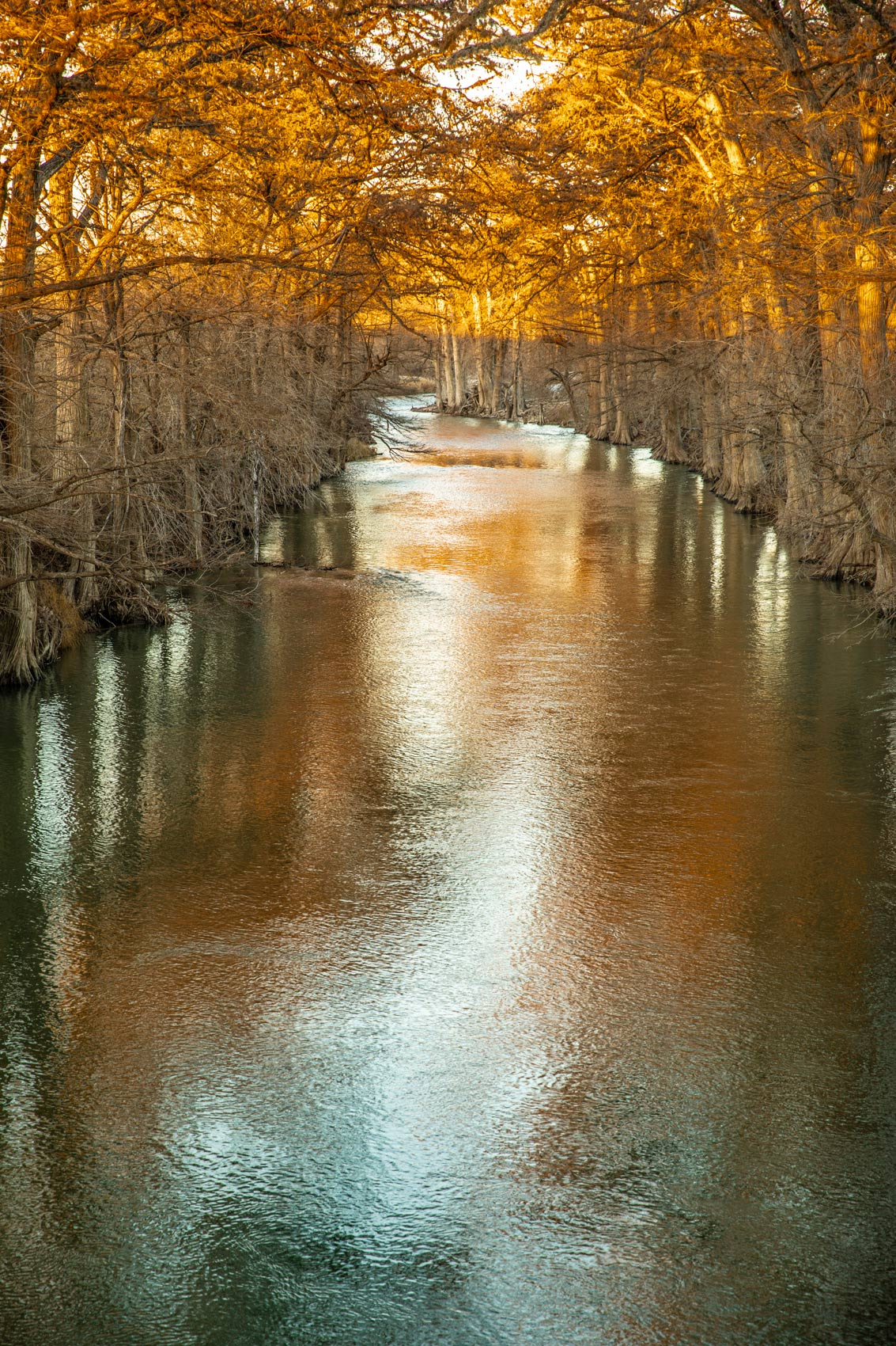 James Kiehl River Bend Park on the Guadalupe River