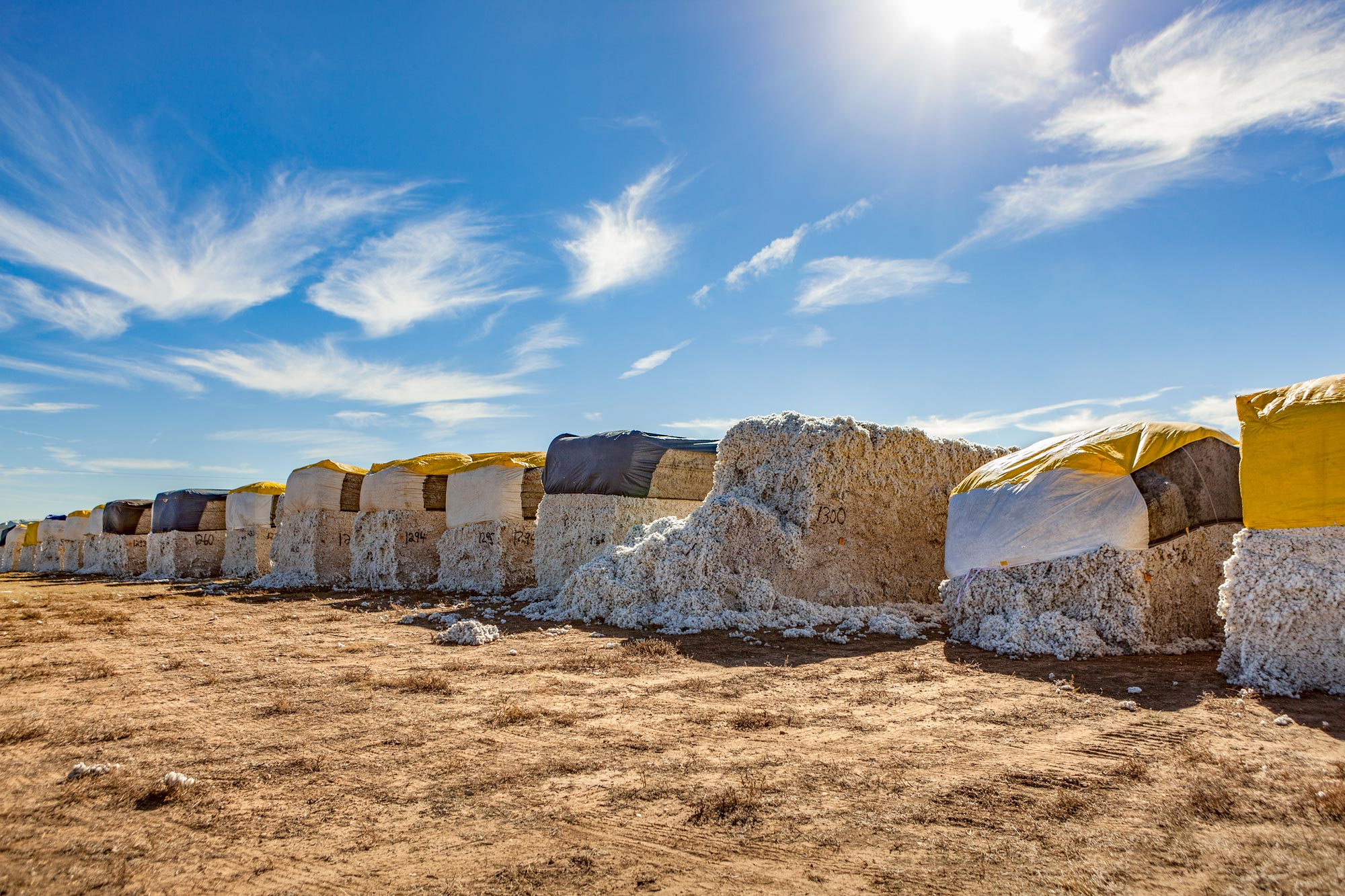 Cotton Bales in the Panhandle, Texas