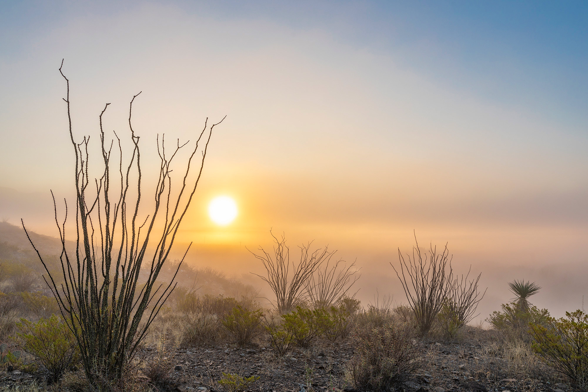 Sunrise over Rio Grande Valley - Big Bend Ranch State Park