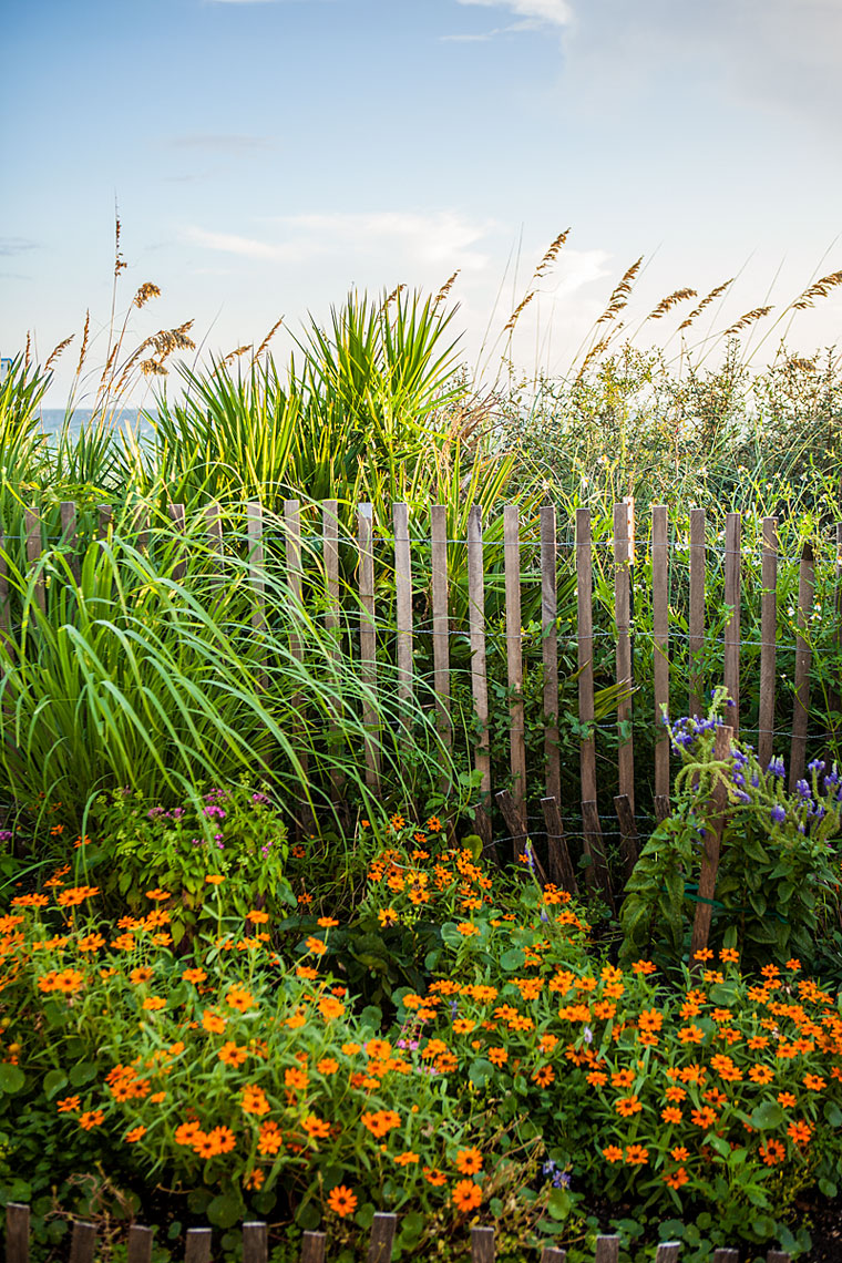 Dune Fence - Seaside, Florida