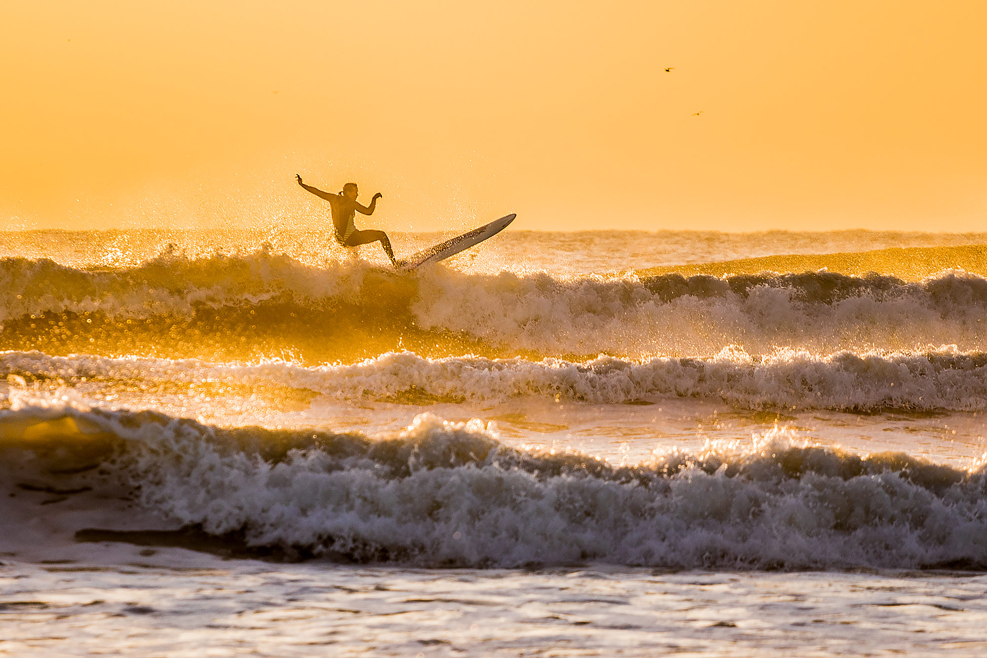 Texas surfer girl on a wave at sunrise