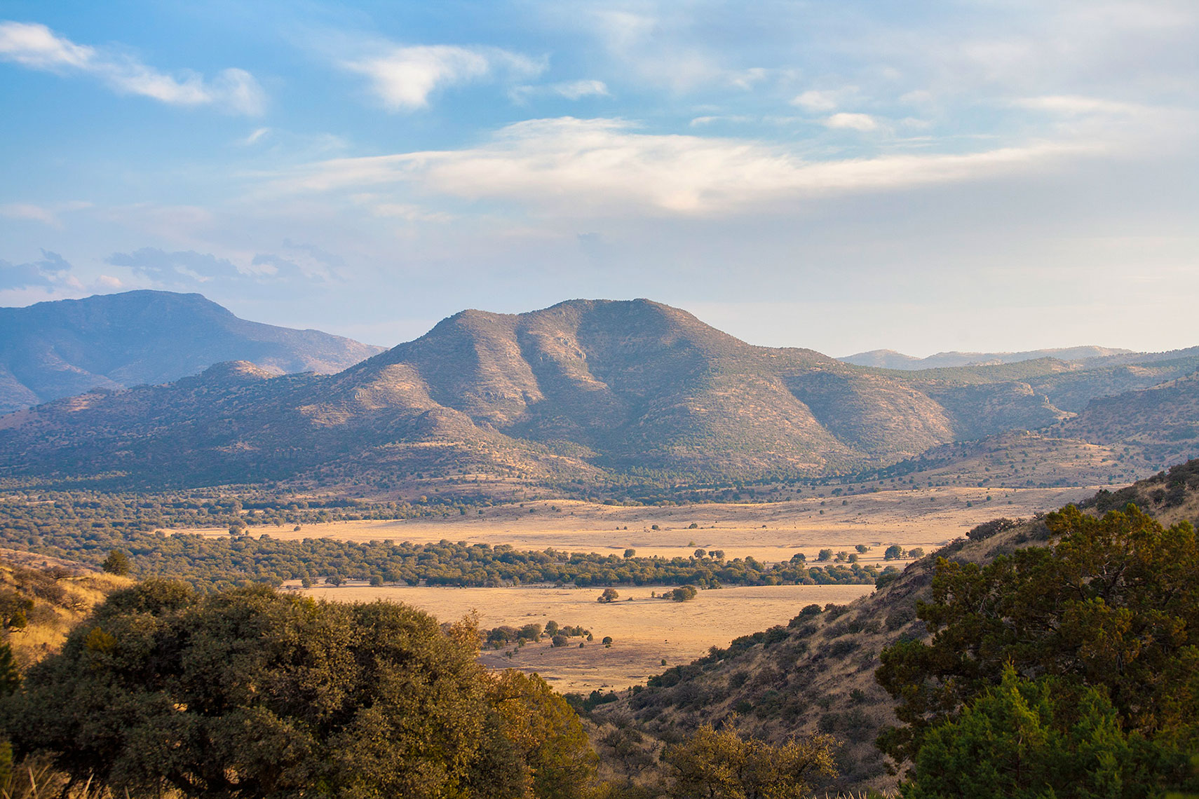 Davis Mountains landscape